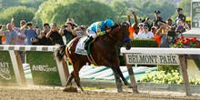 Racehorse Big Data Unlocks the Formula for Human Superathletes