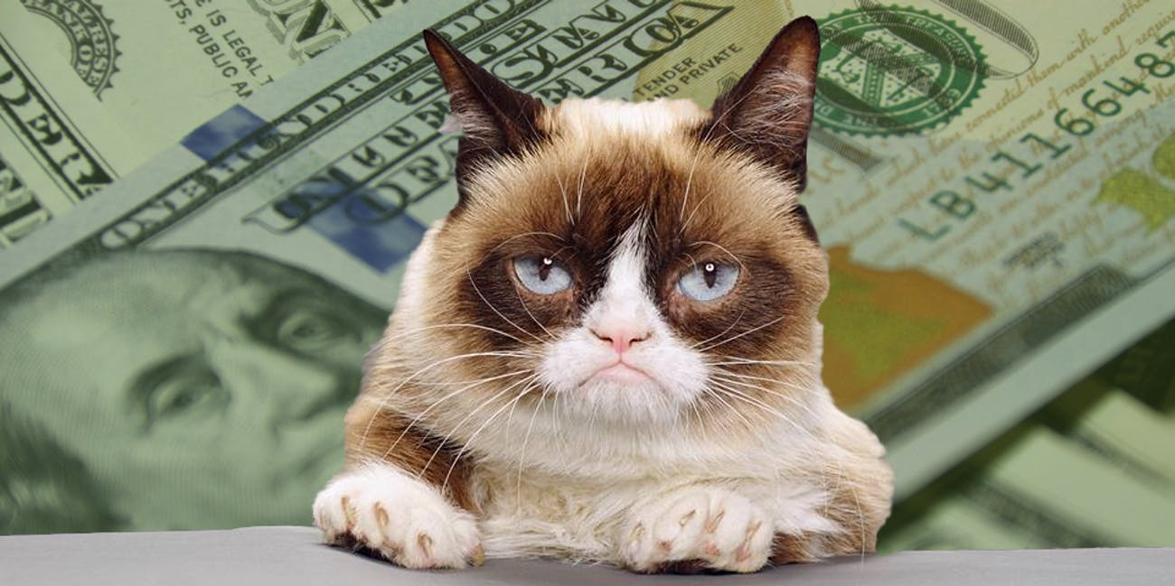 Tardar Sauce, AKA Grumpy Cat, with money