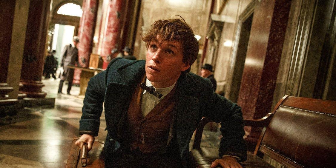 Eddie Redmayne as Newt Scamander