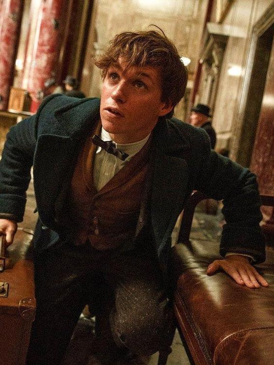 Eddie Redmayne as Newt Scamander