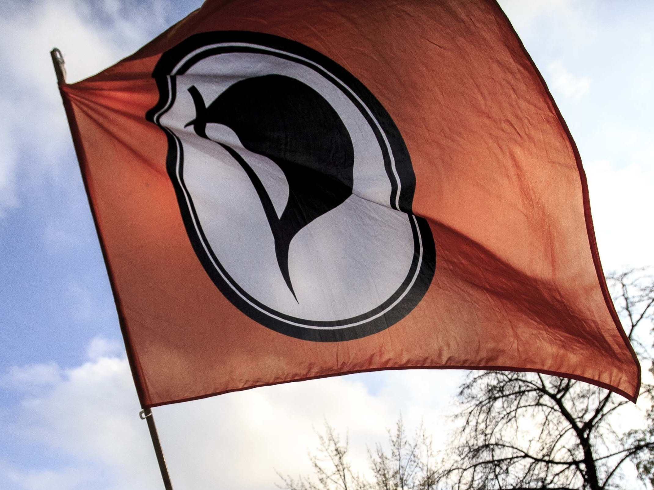 The Iceland Pirate Party Ramps Up to a Radical 2017