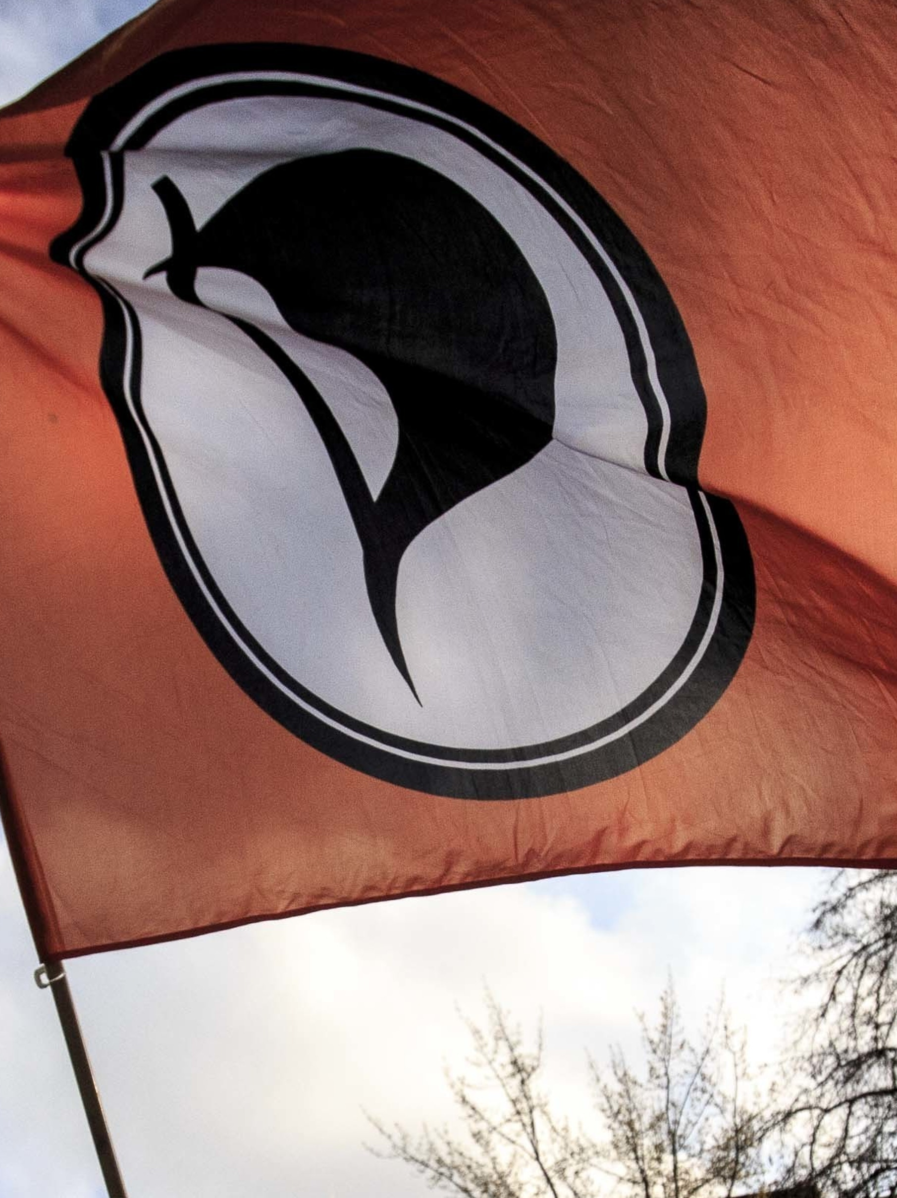 The Iceland Pirate Party Ramps Up to