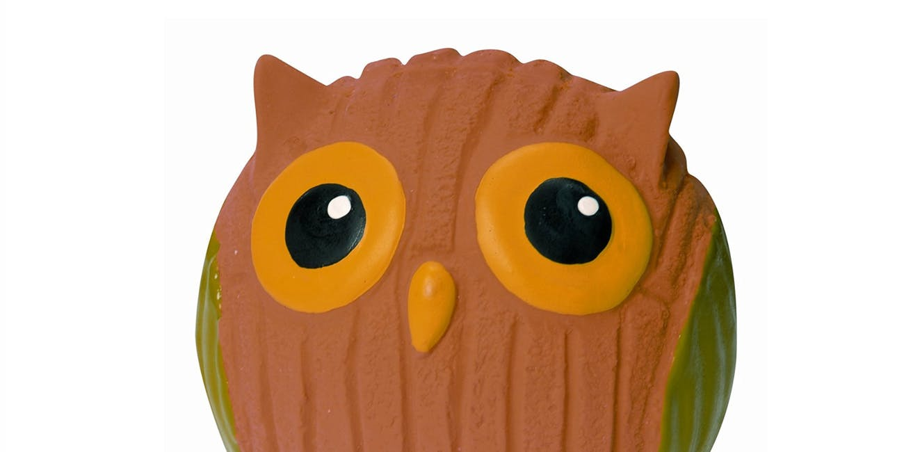dog owl toy