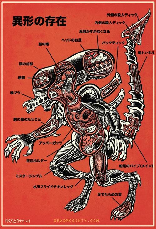 alien31jpg?rect=0%2C160%2C500%2C250&auto=format%2Ccompress&dpr=2&w=500 a complete guide to 'alien' xenomorph biology inverse