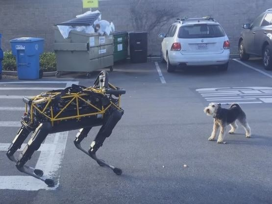 Dog vs. Robot Dog Video Offers a Glimpse of the Uncanny Canine Valley