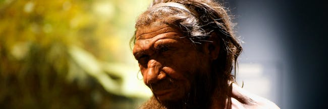 Our Cousin -Neanderthal