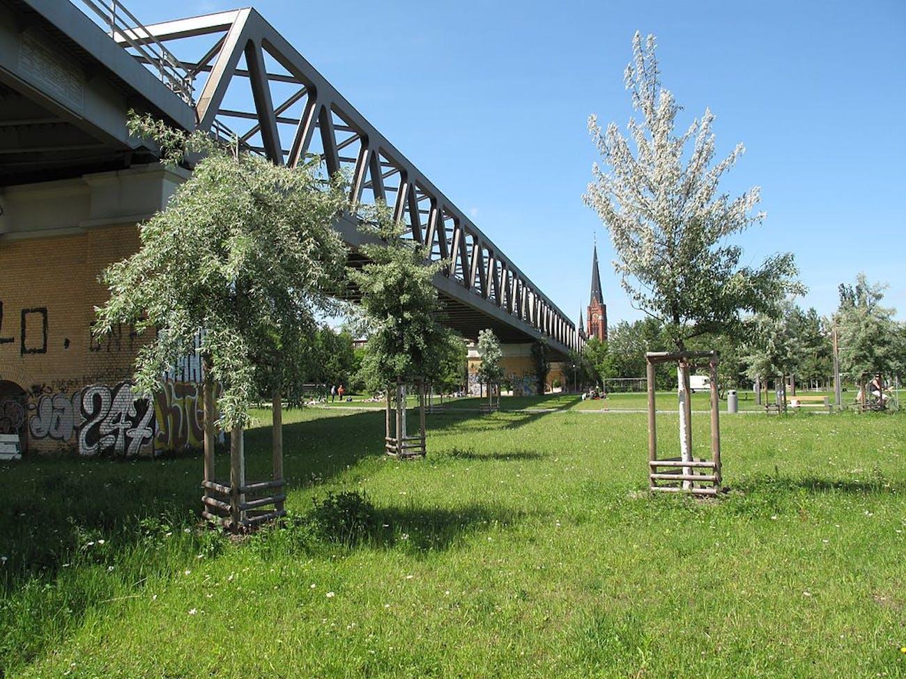 Gleisdreieck park in Germany, and its wild lawn.