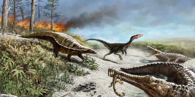 Dinosaurs, toxic plants