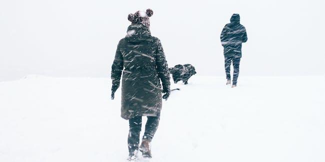 snow skin