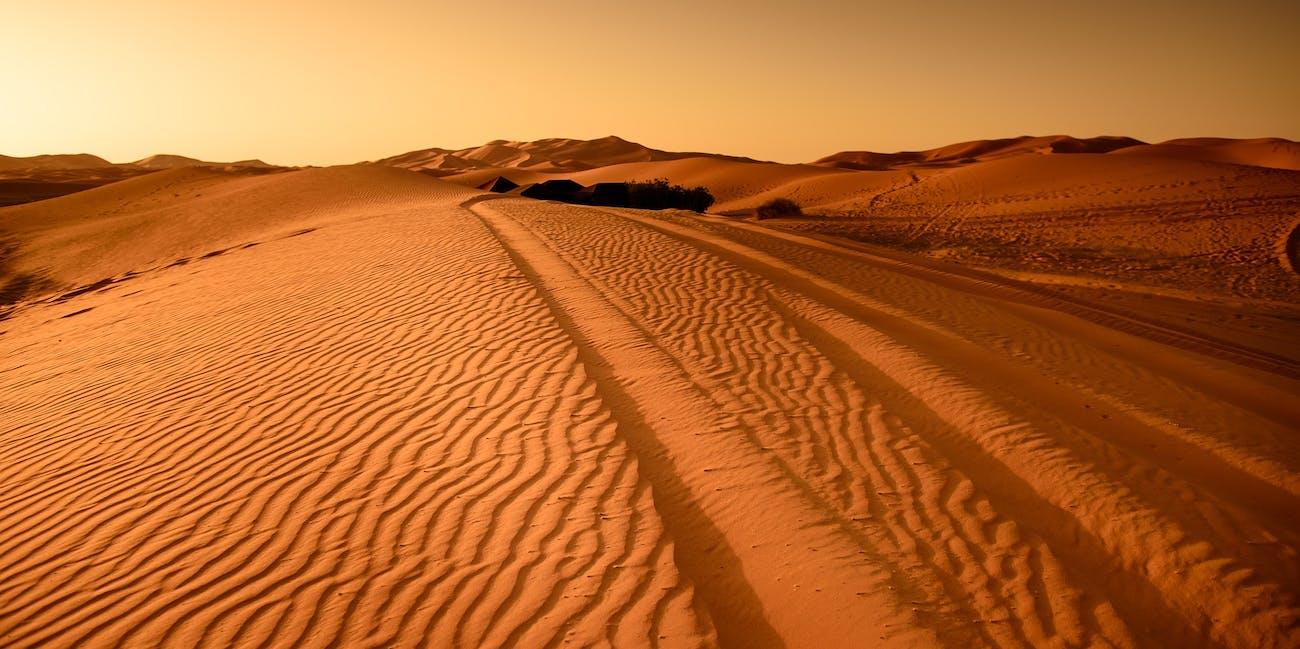 desert-17484621920jpg.jpeg