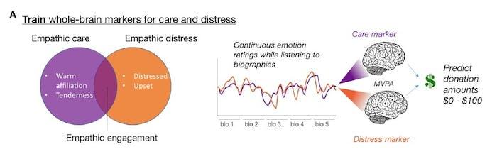 Empathy graph chart table brain neuroscience donation money empathy empathic care distress