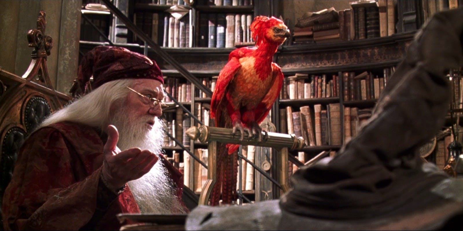 Fawkes the Phoenix in the 'Harry Potter' films