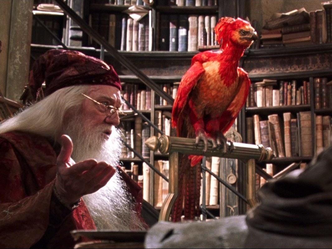'Fantastic Beasts' Is Fawkes the Phoenix's Origin Story