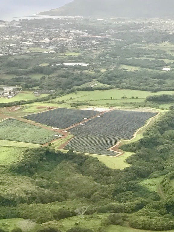 The solar farm nestled in the hills.