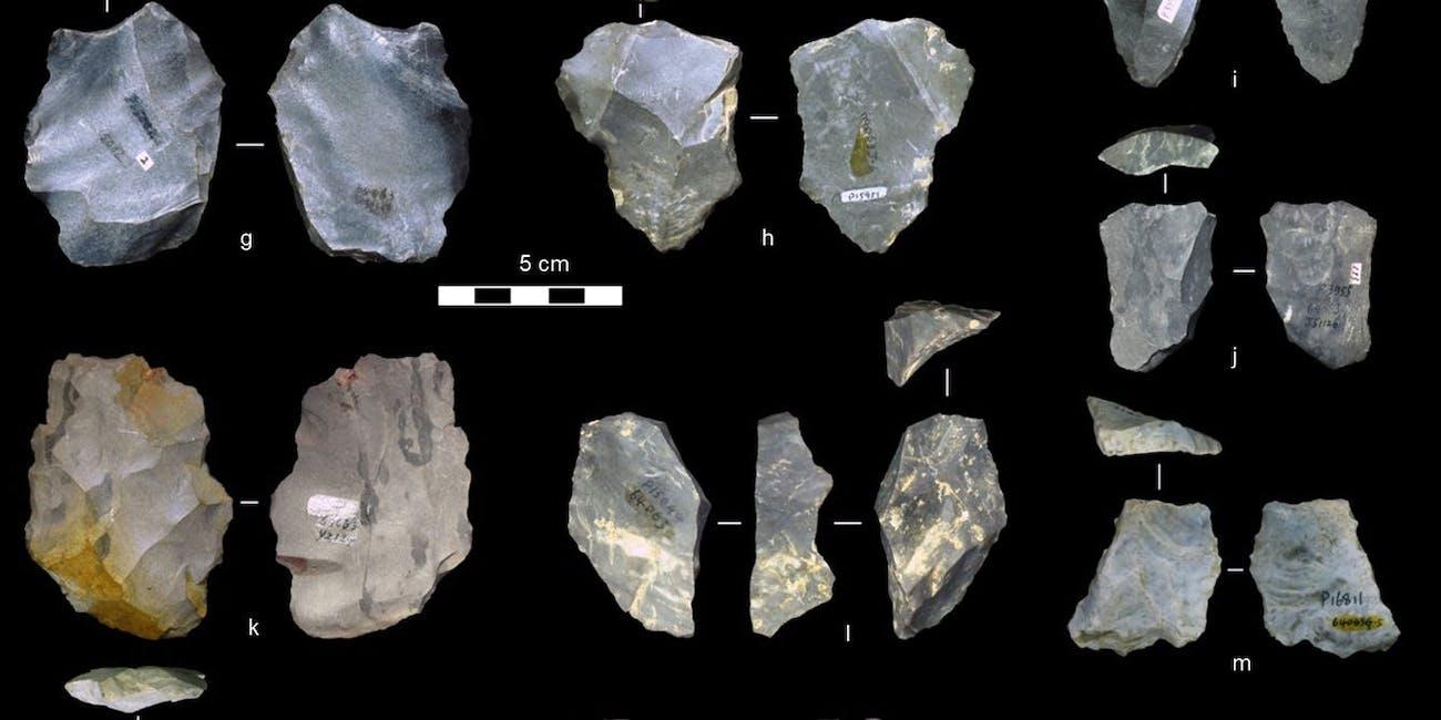 levallois tools