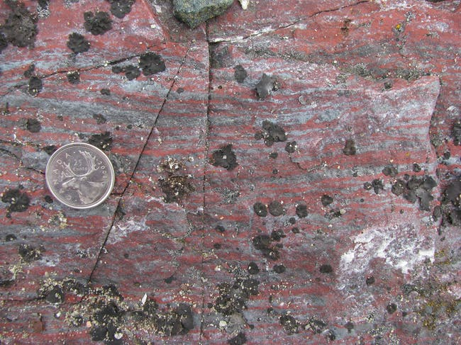 Jasper banded iron formation from the Nuvvuagittuq Supracrustal Belt in Québec, Canada, with grey magnetite layers and red haematite-rich silica layer, both being iron-oxide minerals. Black spots are lichens.