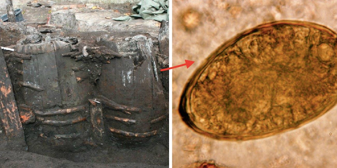 ancient latrine, parasite eggs