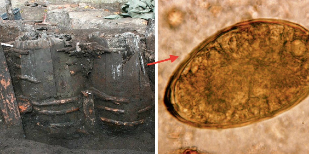 ancient latrine, parasite eggs