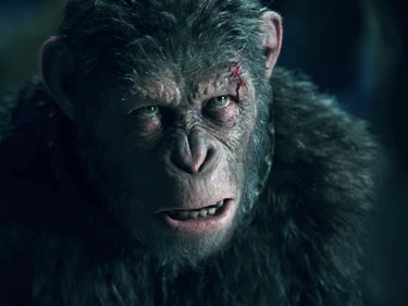 Caesar Goes Bananas in 'War for the Planet of the Apes' Trailer