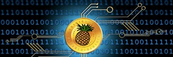 Pineapple Fund cryptocurrency bitcoin MAPS