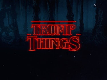 A Congressman Used a 'Stranger Things' Reference to Take Down Trump