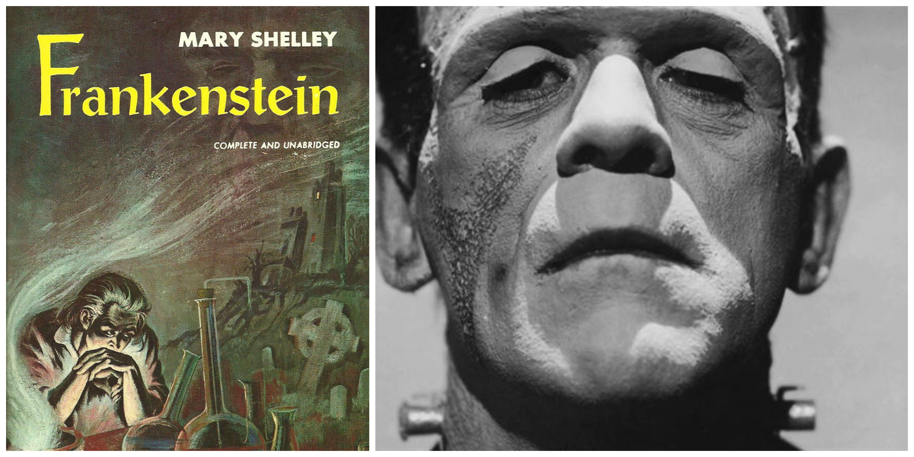 LEFT: One of many covers of 'Frankenstein.' RIGHT: Boris Karloff as the creature in the Universal 1931 film.