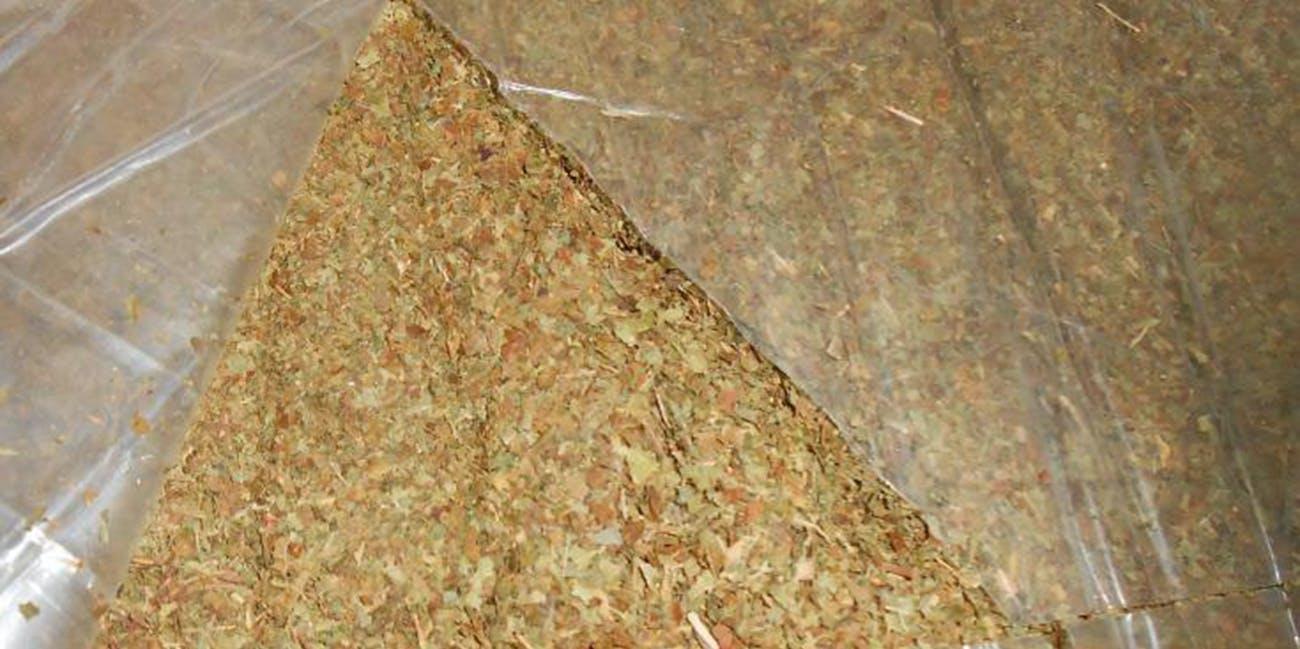 CBP Cincinnati Seizes 71 Shipments of Kratom Powder (19696023004)