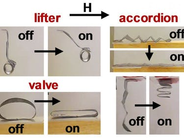 Researchers Figured Out How to Control Soft Robots With Magnets