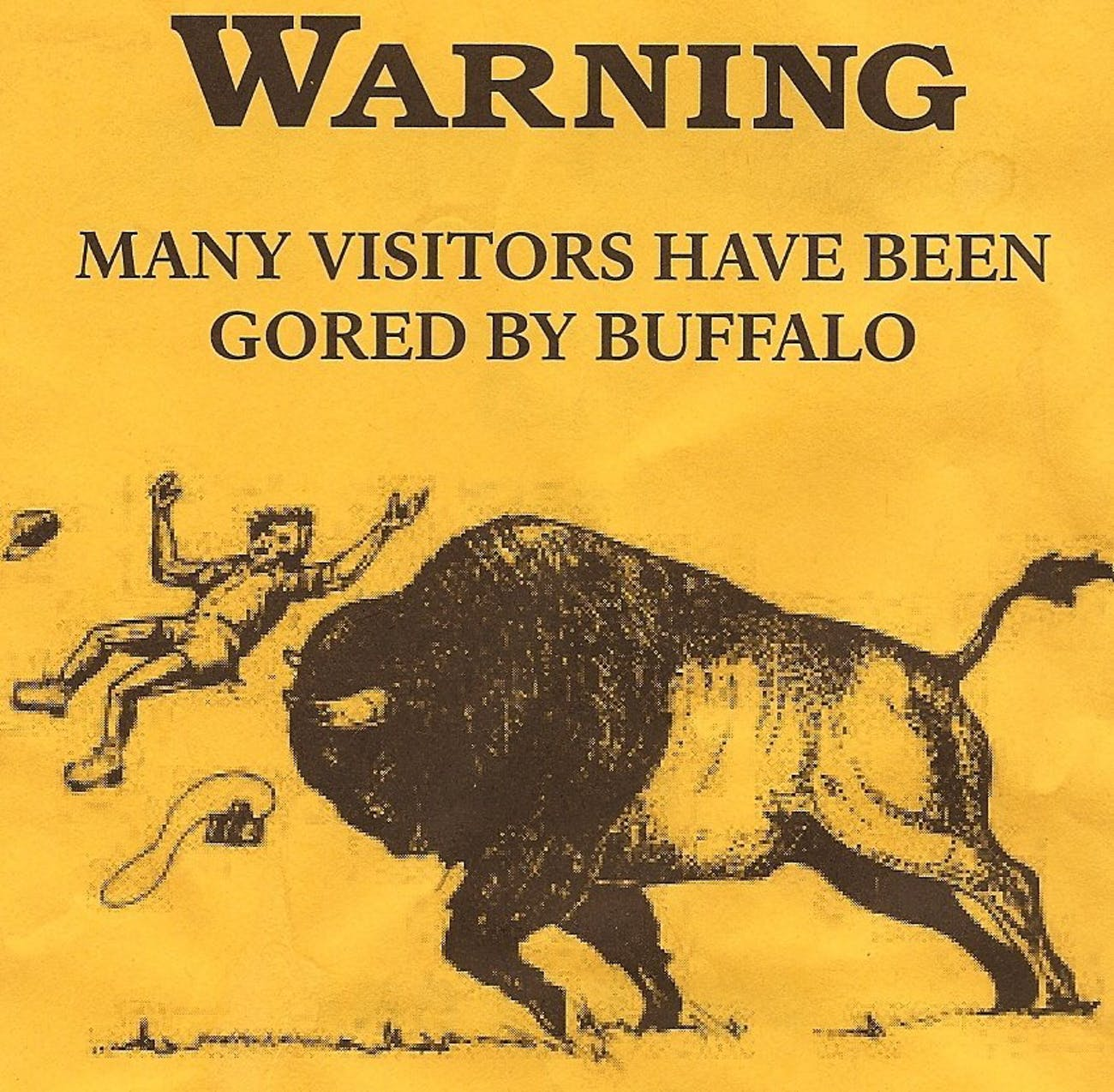 The Psychological Reason Why People Approach Large Animals Inverse Giant Flashcard A Flyer Circa 2008 Passed Out To Visitors At Yellowstone National Park