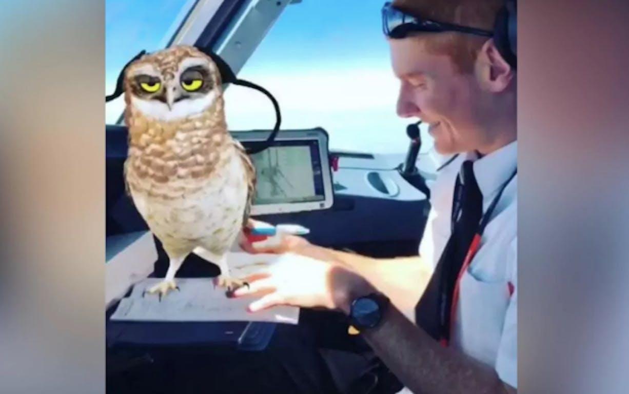 EasyJet faces backlash for pilots on Snapchat