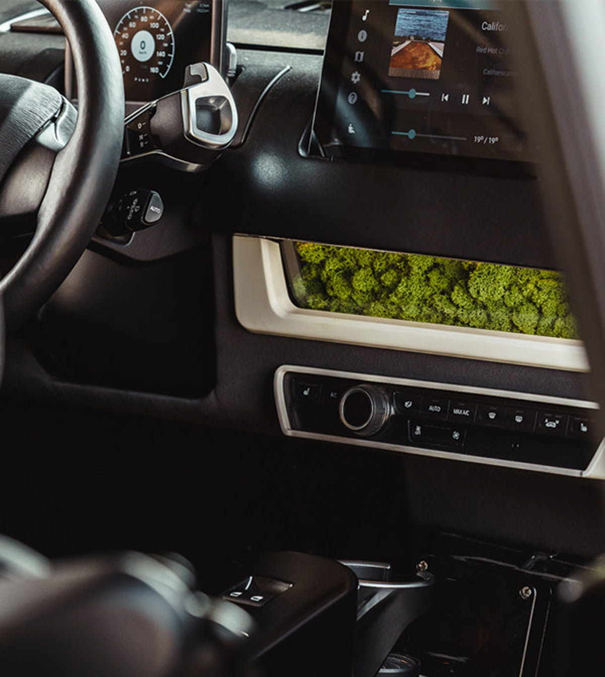 The moss filter on the dashboard.