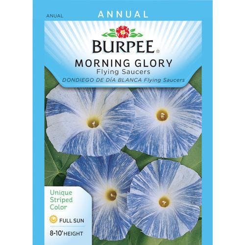 Hallucinogenic morning glory seeds are readily available at garden stores and nurseries for around $1 per packet.