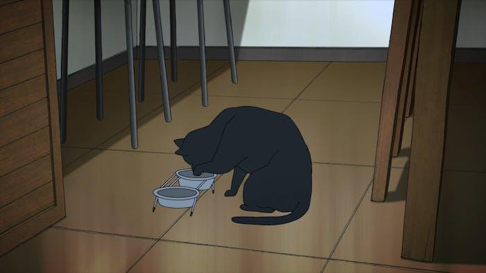 Tako is the Makimura family's pet in 'Devilman Crybaby'.