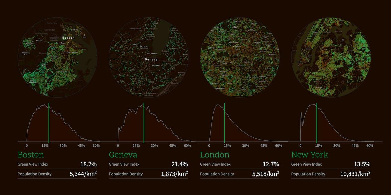 tree coverage comparison Boston Geneva London New York