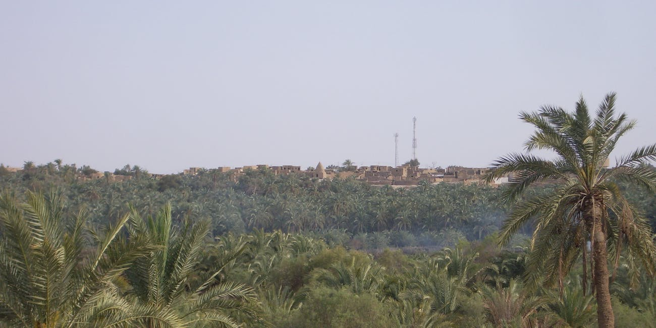 Bahariya Village through the Forest