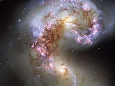 These Colliding Galaxies Live on Because of Galactic Shocks