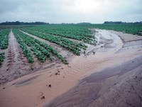 water runoff, farming