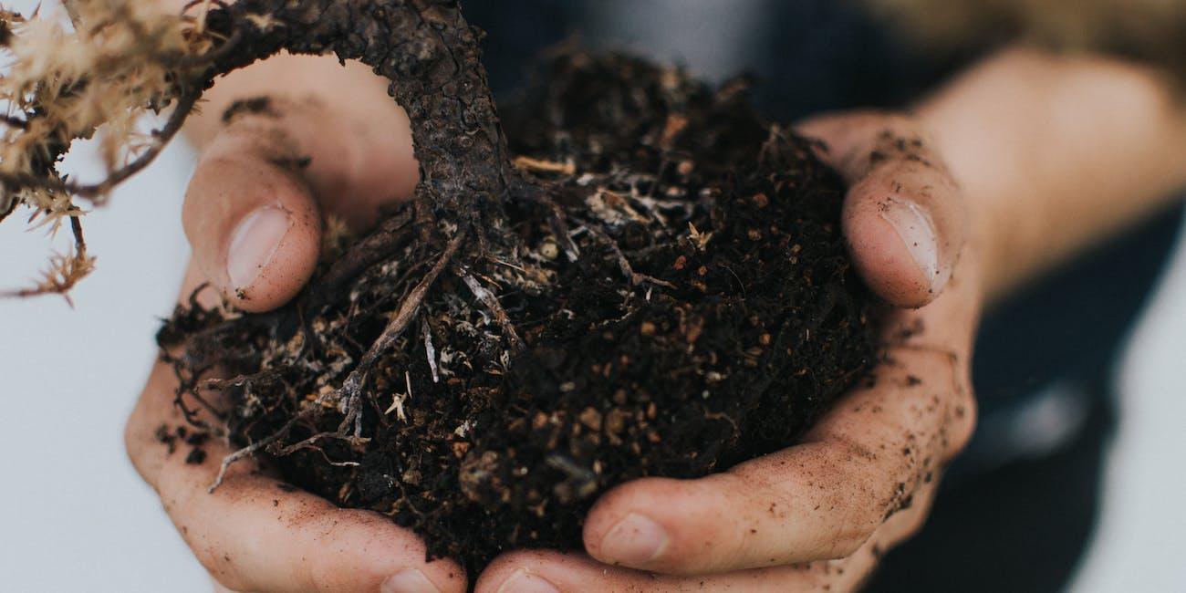 soil, dirt, compost