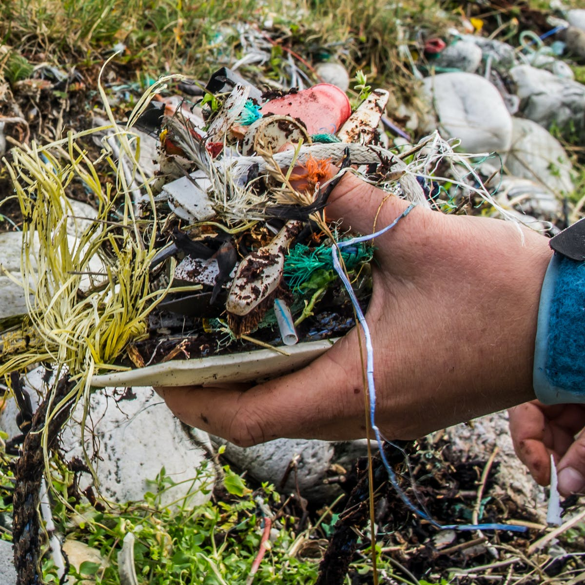 New Study Reveals an Absurd Stat About Plastic Littering Rates Since WWII