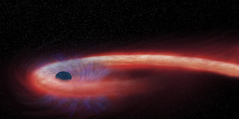 This Ravenous Black Hole Broke a Star-Devouring Record