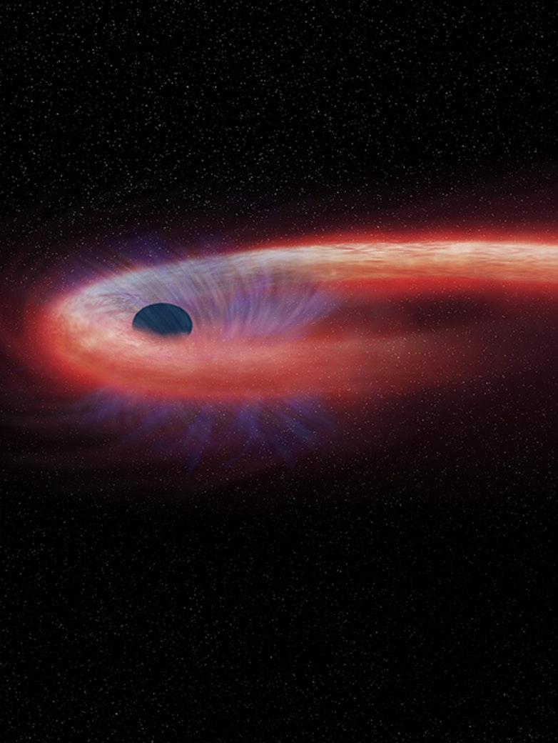 """During a """"tidal disruption event,"""" an object such as a star wanders too close to a black hole and is destroyed by tidal forces generated from the black hole's intense gravitational forces."""
