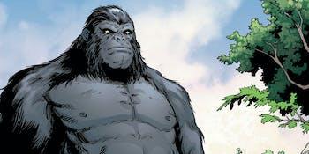 The Flash DC Comics Gorilla Grodd