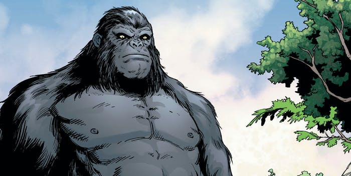 The Flash DC Comics Gorilla Grodd