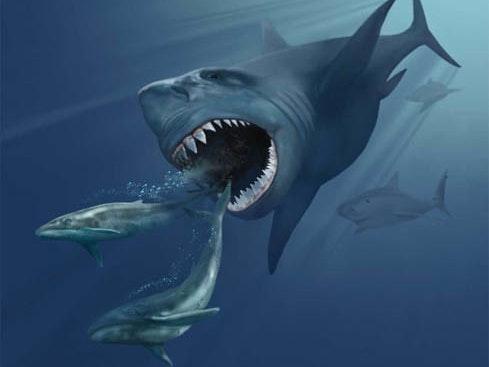 Hurricane Matthew Creates Viral Marketing for Killer Shark Flick