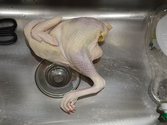 Is It Safe to Season Chicken in the Kitchen Sink?