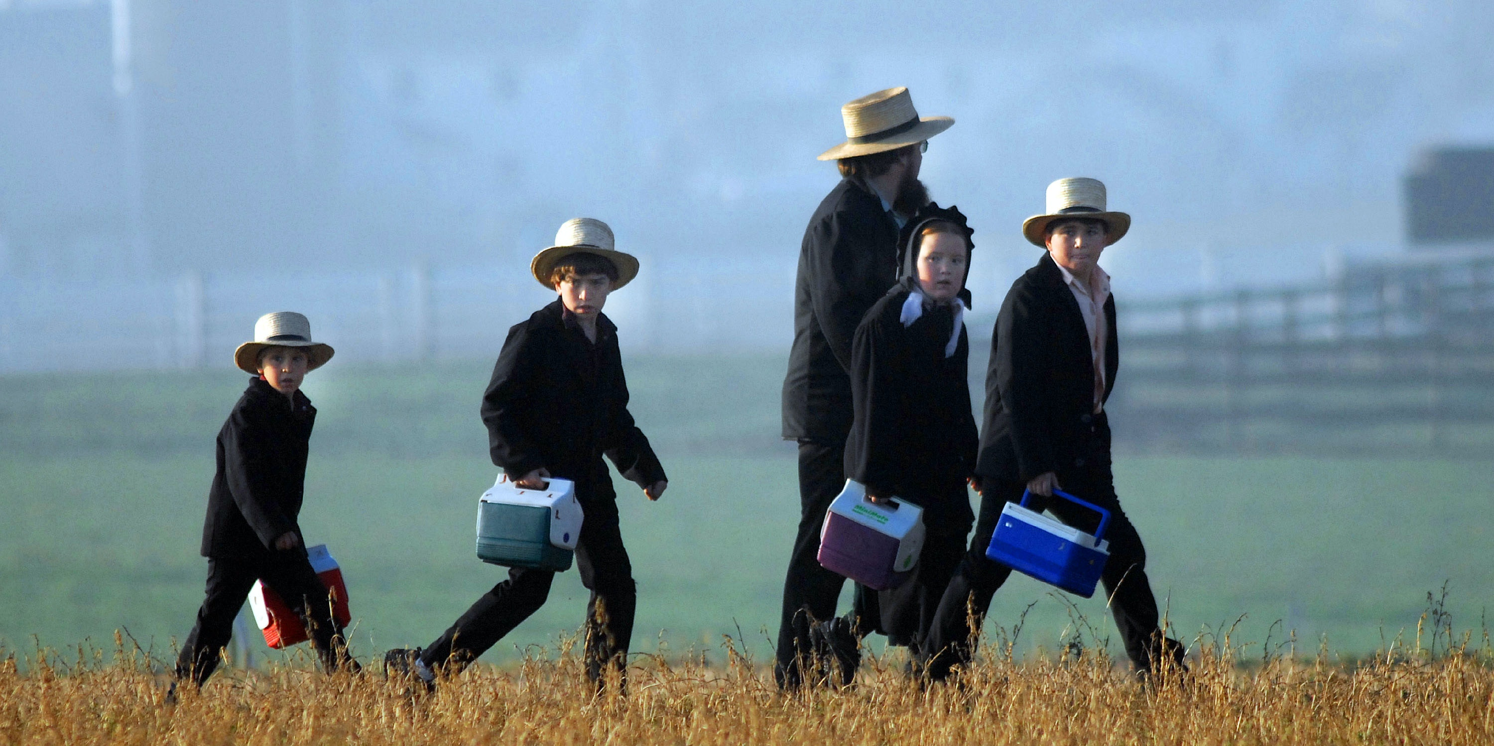 a study of the amish people Scientists have found a genetic mutation in the amish people of the midwestern united states that appears to make them live 10 years longer than people without it, a.