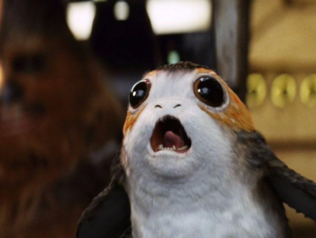 Porgs in Star Wars