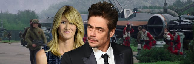 "Laura Dern as Vice Admiral Amilyn Holdo and Benicio Del Toro as the shifty ""DJ."""