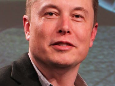 Author Sees 45,000 Visits to Site After Elon Musk Tweet