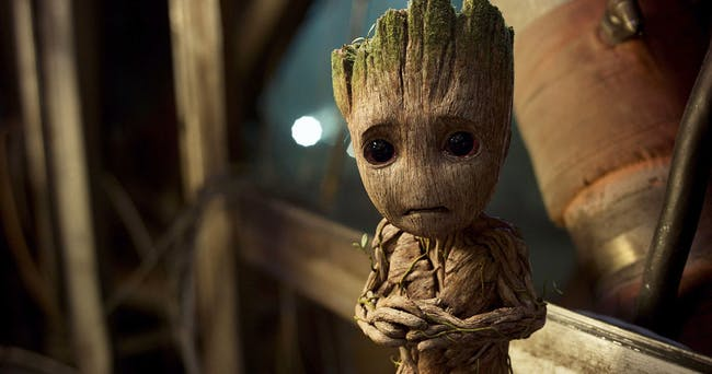 Don't be worried Baby Groot!